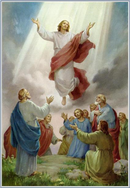 VII Niedziela Wielkanocny – Wniebowstąpienie Pańskie – 16.05.2021 r. – ogłoszenia